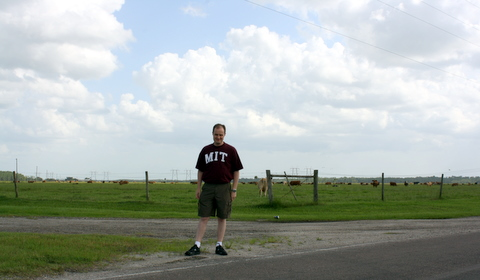 Steve in front of a field of cows