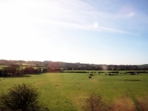 a shot of the English countryside from the bus