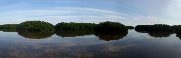 Weedon Island Preserve - 2013-01-13T12:00:37_v2