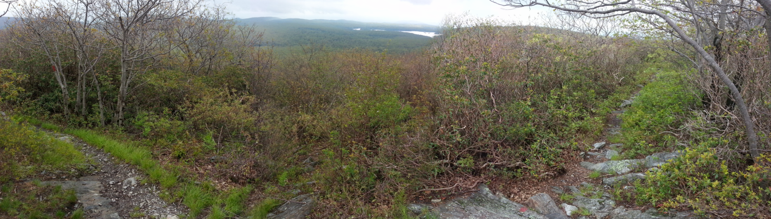 CT-Mount Frissell (south slope)