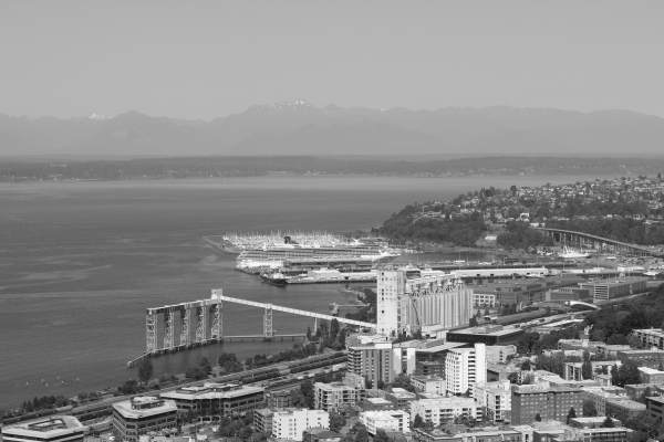 cruise ship from the Space Needle