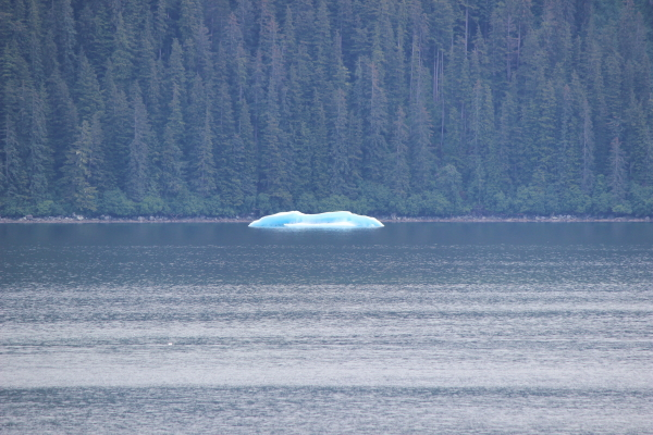 one of the many ice bergs we saw