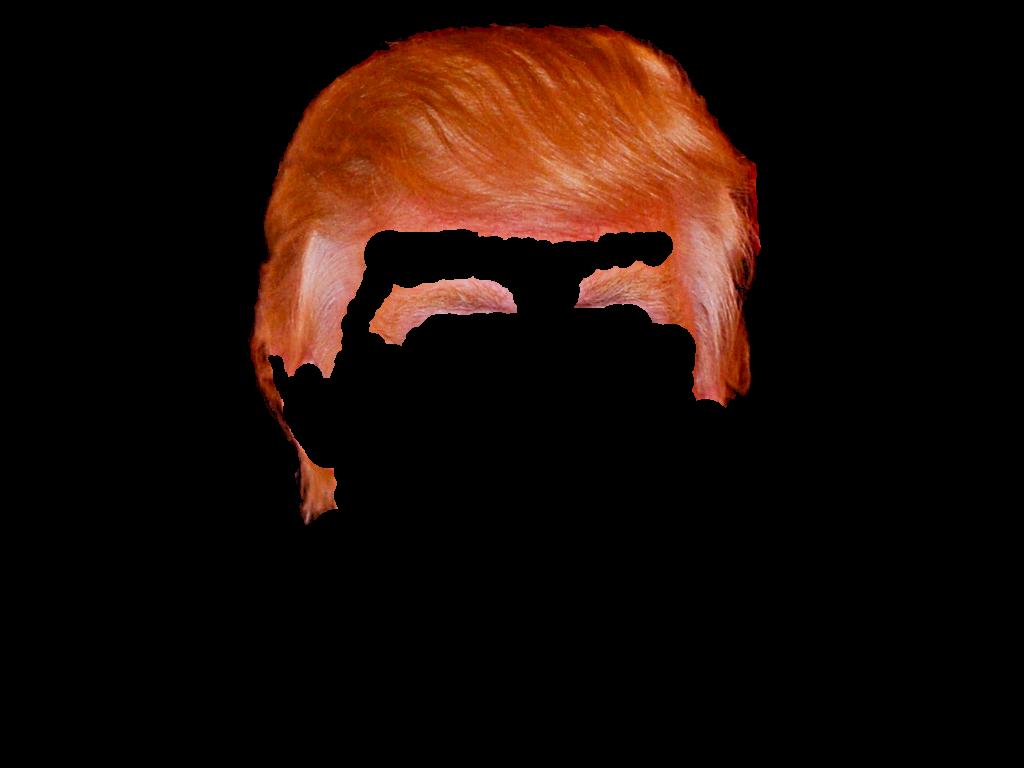 Donald Trump hair png